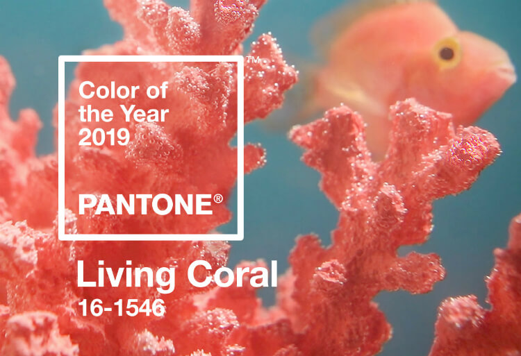 Pantone Living Coral advert