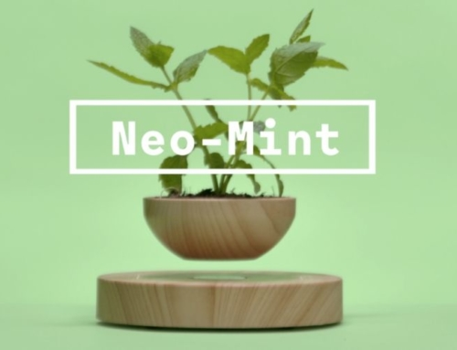 Will Neo Mint Dominate Home Interiors In 2020?