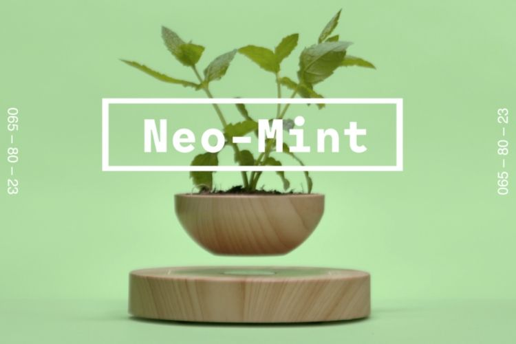 Neo Mint - Colour of the Year 2020